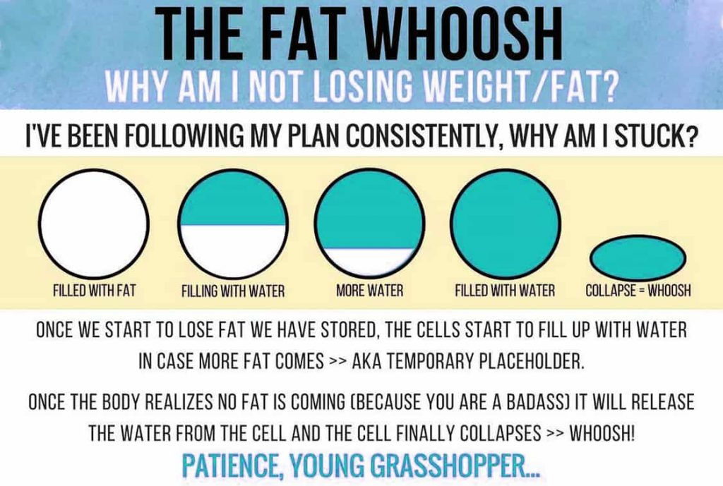 Diagram - Why Am I Nor Losing Weight/Fat