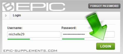 bepic official site - login window
