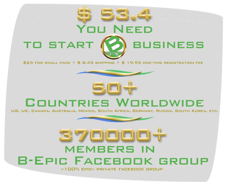 BEpic company statistics (see infographics)